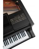 Bosendorfer Limited Edition-Oscar Peterson