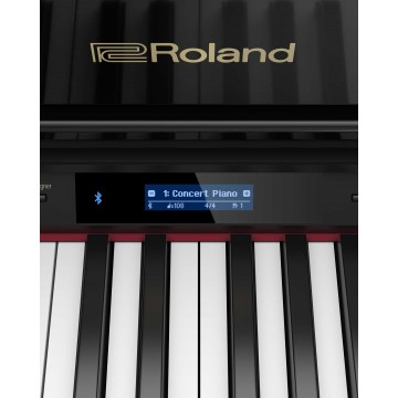 Roland GP-607 B